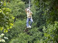 Zip Line Canopy Tour from Montego Bay