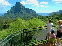 Circle Island Tour of Moorea with the Belvedere Visit