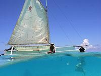 Moorea Opunohu Bay Cruise on a Traditional Outrigger