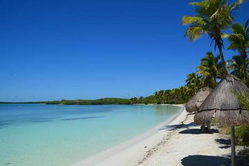 Paradise Islands Tour: Isla Contoy and Isla Mujeres