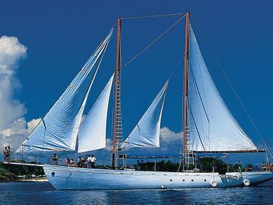 Sea Spray Day Sailing Adventure