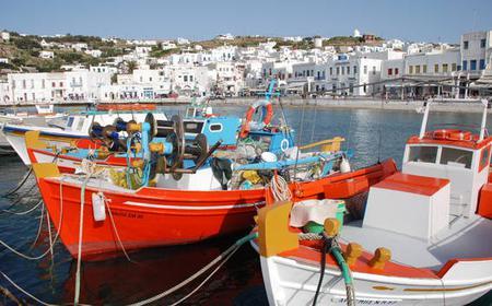 Half-Day Mykonos: City Walking & Bus Island Tour
