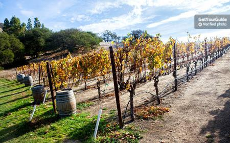 Napa & Sonoma Valley Wine Tour from San Francisco