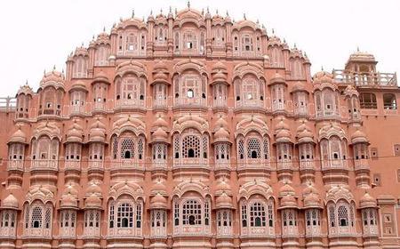 From Delhi: Full-Day Jaipur Tour & Elephant Joy