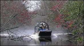 New Orleans Half-Day Plantation & Airboat Combo Tour