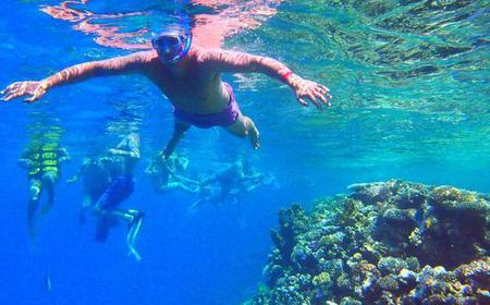 From Sharm El Sheikh: Snorkeling At Tiran Island By Boat