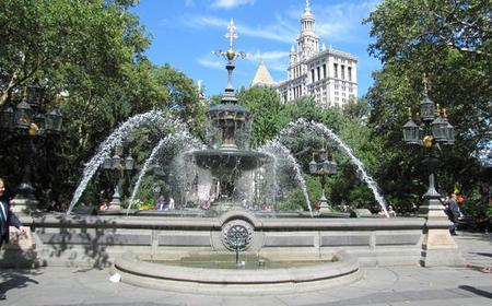 New York: Historic Downtown Walking Tour
