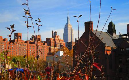 New York 75-Minute High Line Walking Tour