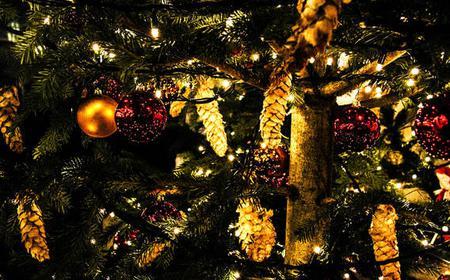 4-Hour New York Christmas Holiday Tour