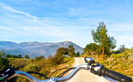 Nice: E-bike 7 Hills & Optional Wine Tasting