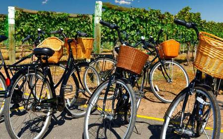 Vineyards of Nice Half-Day E-Bike Tour