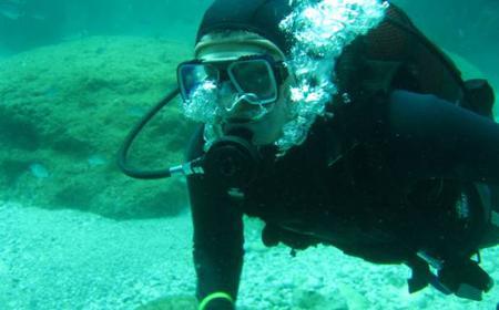 Ocho Rios Scuba Diving Private Certification Course
