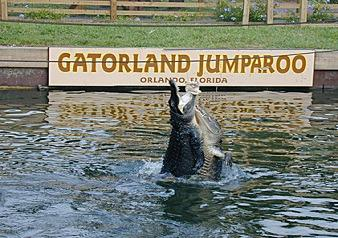 Gatorland Excursion Tour with Transportation and Admission