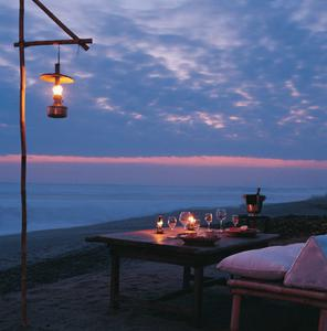 Romantic Beach Barbecue Dinner under the Stars