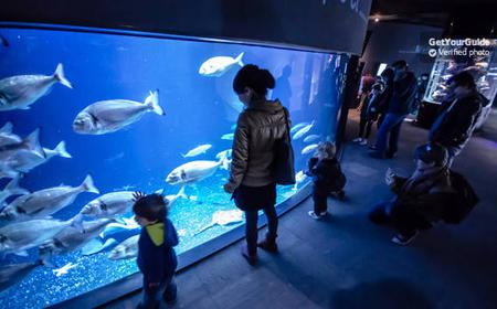 Aquarium de Paris Full-Day Entrance Ticket