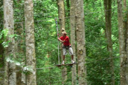 Full Day Treetop Adventure Package