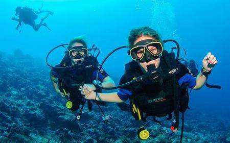 Try Scuba Diving in Dubai