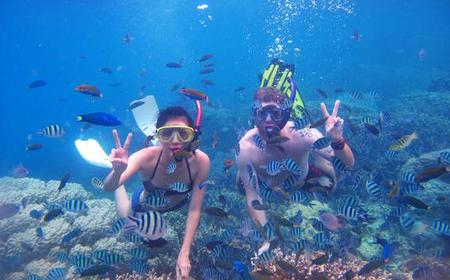 From Dubai: 2-Hour Snorkeling Trip to Fujairah