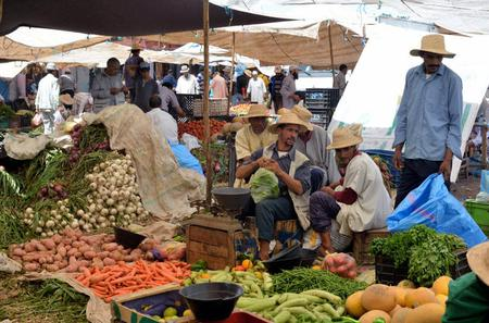 Guided Day Trip to Weekly Market at Atlas Mountains from Marrakech