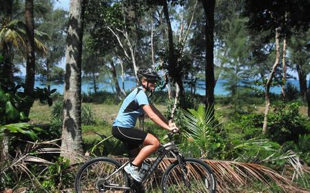 Bike Tour to Turtle Sanctuary and Waterfall in Thailand