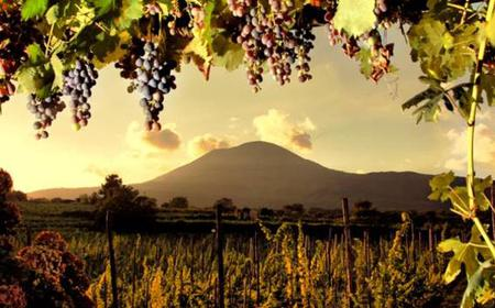 Mount Vesuvius 4WD Tour and Wine Tasting from Sorrento