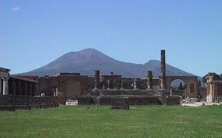 Pompeii: Private Half-Day Tour from Sorrento by Minibus