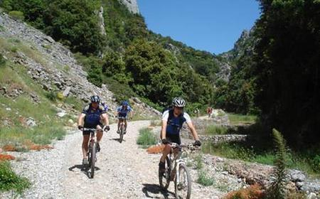 Self-Guided Mountain Bike Tour in Istria - 8 days