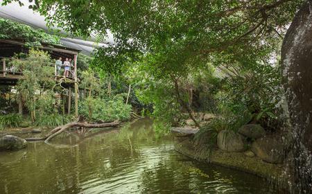 Wildlife Habitat Port Douglas