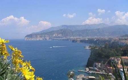 Amalfi Coast Tour: 8-Hour Car Service with Driver