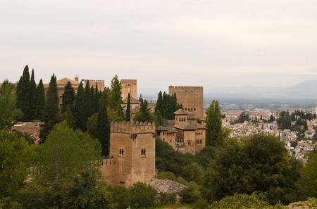 Private Guided Walking Tour in Granada