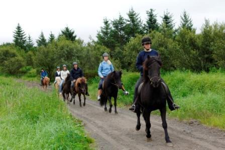 Golden Circle Express & Viking Horse Riding: Full-Day