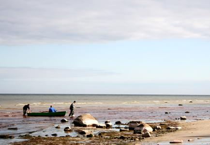 Kurzeme Coastal Scenery from Riga