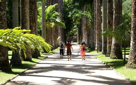 Rio de Janeiro: Botanical Garden Ticket and Tour