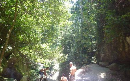 Rio de Janeiro Atlantic Rainforest Waterfall Hike