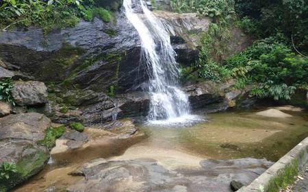 Tijuca Forest Tour with Waterfall