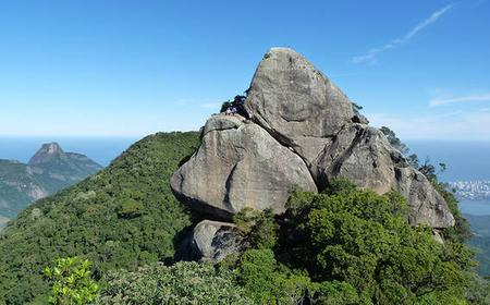 Bico do Papagaio Hiking Tour - Tijuca Forest