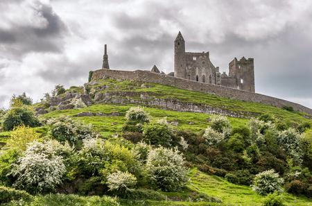 Private Tour: Irish Ancestry and Heritage Walking Tour in Dublin