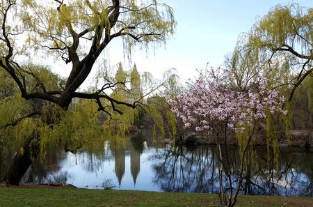 Private Scenic Central Park Walking Tour