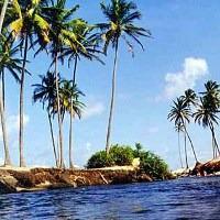 Canoe & Beach Day at Mangue Seco: Full Day