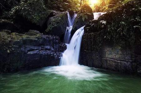 El Yunque Rainforest and Bio Bay All-Day Tour