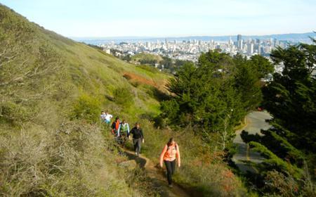San Francisco 3-Hour Urban Jungles & City Heights Hike