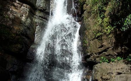 El Yunque Rainforest Nature Walk to Waterfall Adventure