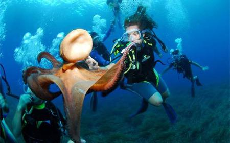 Ibiza Scuba Diving for Beginners