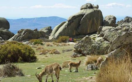 Sierra de Guadarrama Hiking Day Trip