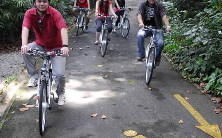 Singapore: 2-Hour Sentosa Bike Rental