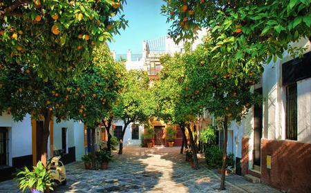 Seville: Medieval Walking Tour
