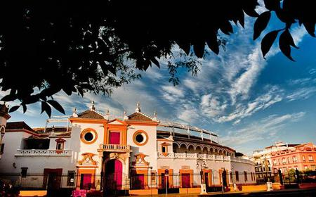 Artistic Seville 3-Hour Sightseeing Tour and Cruise