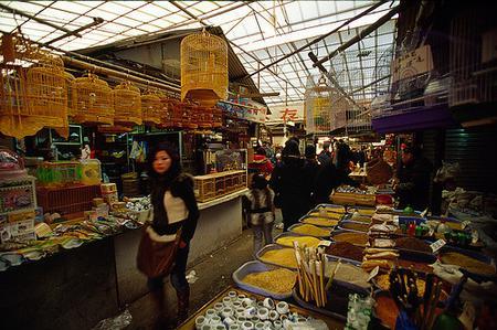 Full Day of Shopping in Shanghai
