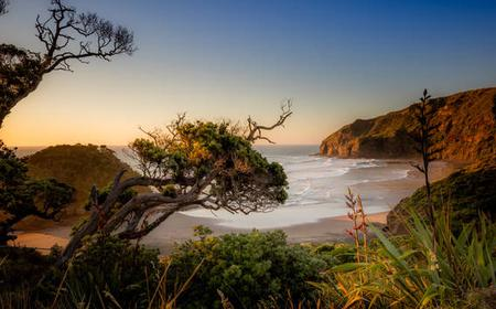 Photography Tours into Auckland's Wild West