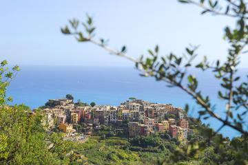 Pesto course in Cinque Terre with Boat Trip and Lunch from La Spezia